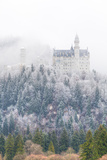 Neuschwanstein Castle in Winter, Fussen, Bavaria, Germany, Europe Photographic Print by Miles Ertman