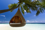 Sofa Hanging on a Tree on the Beach, Maldives, Indian Ocean Photographic Print by Sakis Papadopoulos