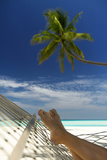 Hammock and Palm Tree, Maldives, Indian Ocean Photographic Print by Sakis Papadopoulos