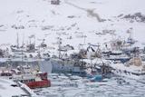 Ilulissat Harbour, Greenland, Denmark, Polar Regions Photographic Print by Sergio Pitamitz