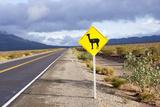 Guanaco Sign, Argentina Photographic Print by Peter Groenendijk
