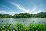 Green Landscape with Lake and Lush Hills in Hangzhou, Zhejiang, China Photographic Print by Andreas Brandl