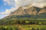 Mount Mulanje at Sunset, Malawi, Africa Fotografisk tryk af Michael Runkel