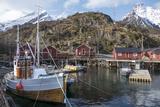 Nusfjord, Lofoten Islands, Nordland, Arctic, Norway, Scandinavia Fotografisk trykk av Rolf Richardson