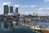 Bayside Marina, Downtown, Miami, Florida, United States of America, North America Photographic Print by Sergio Pitamitz