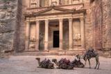 Camels in Front of the Treasury, Petra, Jordan, Middle East Fotografisk tryk af Richard Maschmeyer
