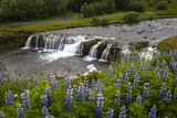 River and Waterfall in Hveragerdi, Reykjanes Peninsula, Iceland, Polar Regions Photographic Print by Yadid Levy