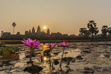 Sunrise over the West Entrance to Angkor Wat, Angkor, Siem Reap, Cambodia Photographic Print by Michael Nolan