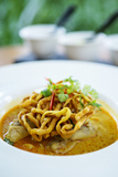 Crispy Noodles and Thai Curry, Chiang Mai, Thailand, Southeast Asia, Asia Photographic Print by Alex Robinson