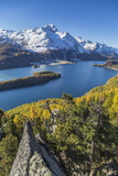 Lake Sils and Piz La Margna Covered in Snow from a Rocky Terrace Above the Engadine Woods Photographic Print by Roberto Moiola