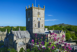 St. Davids Cathedral, Pembrokeshire, Wales, United Kingdom Photographic Print by Billy Stock