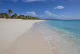 Roberto Moiola - Barbuda, Antigua and Barbuda, Leeward Islands, West Indies Fotografická reprodukce