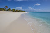 Barbuda, Antigua and Barbuda, Leeward Islands, West Indies Photographic Print by Roberto Moiola