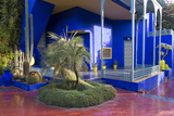 Jardin Majorelle, Owned by Yves St. Laurent, Marrakech, Morocco, North Africa, Africa Reproduction photographique par Stephen Studd
