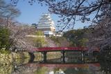 Himeji Castle, Himeji, Kansai, Honshu, Japan Photographic Print by Ian Trower