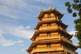 Giac Lam Pagoda, Ho Chi Minh City, Vietnam, Indochina, Southeast Asia, Asia Photographic Print by Ian Trower