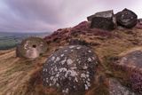 Millstone Amongst Heather and Lichen Covered Boulders at Dawn Photographic Print by Eleanor Scriven