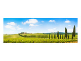 Chianti Area Panorama Tuscany Art