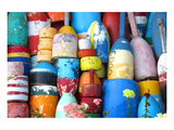 Colorful Lobster & Cod Buoys Prints
