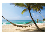 Beach Hammock & Tropic Sea Print