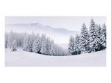 Foggy Winter Mountain Panorama Print
