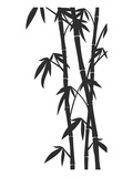 Bamboo Stems Ink Sketch Prints