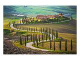 Cypress Lined Tuscany Road Umělecké plakáty