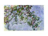 The Roses, 1925-26 Reproduction sur métal par Claude Monet