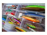 Fishing Tackle Box Lure & Bait Art