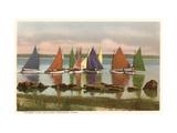 Flotte arc-en-ciel, Nantucket, Massachusets Reproduction sur métal