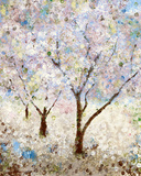 Cherry Blossoms II Prints by Katrina Craven