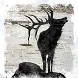 Birchbark Elk Art by Carol Robinson