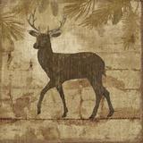 Country Deer Plakater af Nan
