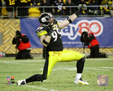 Brett Keisel 2010 Action Photo