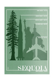 Sequoia National Park - Redwood Relative Sizes Affiches par  Lantern Press