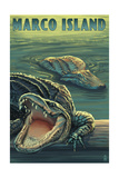 Marco Island - Alligators Poster by  Lantern Press