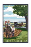 Intercourse, Pennsylvania - Amish Farmers and Buggy Posters by  Lantern Press