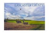 Lancaster County, Pennsylvania - Amish Farmer and Hot Air Balloons Prints by  Lantern Press