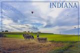 Indiana - Amish Farmer and Hot Air Balloons Prints by  Lantern Press