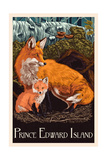 Prince Edward Island - Fox and Kit Letterpress Prints by  Lantern Press