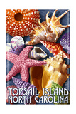 Topsail Island, North Carolina - Shells Posters by  Lantern Press