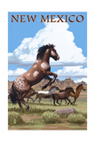 New Mexico - Wild Horses Posters by  Lantern Press