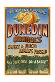 Dunedin, Florida - Orange Grove - Vinatge Sign Prints by  Lantern Press