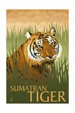 Sumatran Tiger - Lithograph Series Posters by  Lantern Press