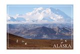 Alaska - Mt. McKinley and Goats Prints by  Lantern Press