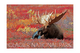 Glacier National Park - Bull Moose and Red Flowers Posters by  Lantern Press