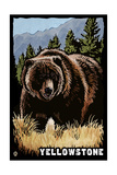 Bear Family - Grizzly Bear Scratchboard Poster by  Lantern Press