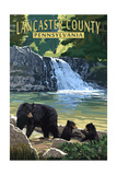 Lancaster County, Pennsylvania - Black Bears and Waterfall Prints by  Lantern Press