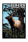 Glacier National Park - Elk - Scratchboard Prints by  Lantern Press
