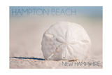 Hampton Beach, New Hampshire - Sand Dollar on Beach Posters by  Lantern Press